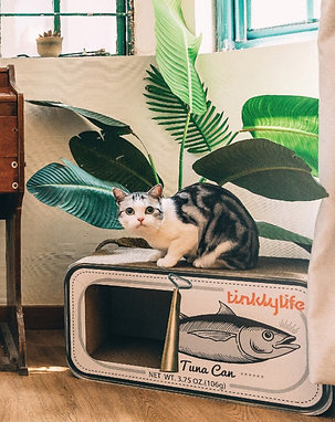 [CANNED ] CAT HOUSE&SCRATCHER