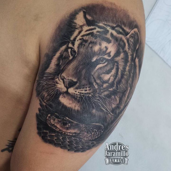 Tigre en sombras_En _inkedtattooshop _Whatsapp 3173775667__mundo_skink #tattoocommunity #tattooed #t