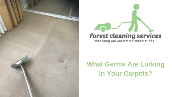 What Germs are lurking in your Carpets | Forest Cleaning Services