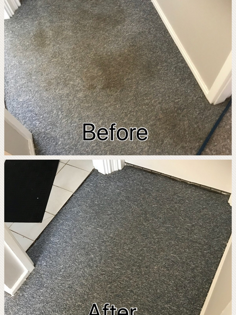 Reliable Carpet Cleaner South West Sydney