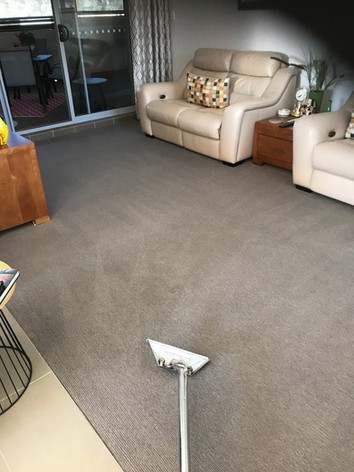Residential Carpet Cleaner Sydney