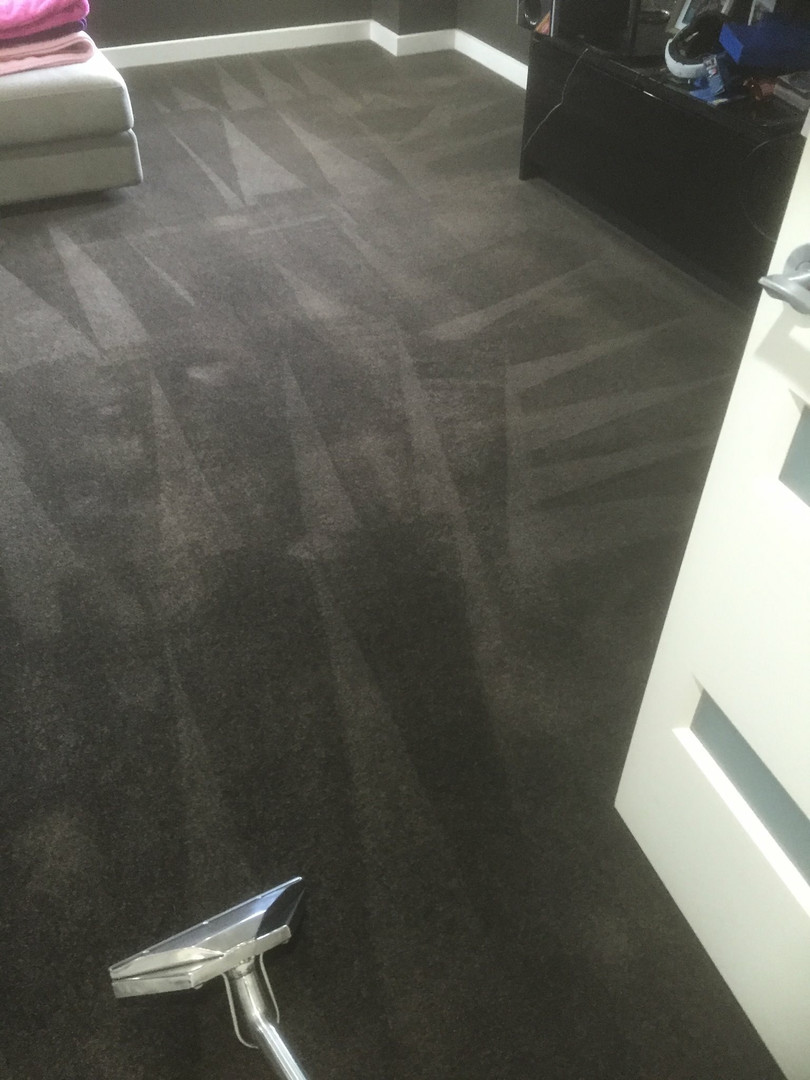 Carpet Cleaning Forest Cleaning Services