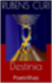 Livro Destinia - Rubens Curi