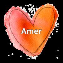 Virtual Garden Amer.png