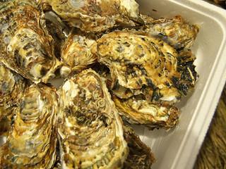 広田湾の美味しい牡蠣をみんなで頂きました