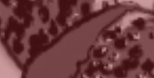 abstract-button.str.png