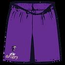"Standard 9"" Shorts"