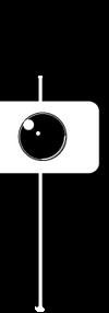 2018 robert rice logo.png