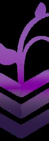 erin-behunin-logo.png
