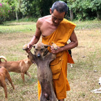 Monk and dog