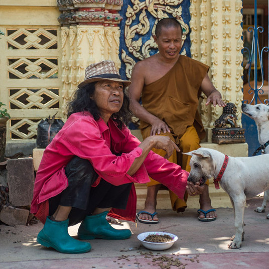 Thep and monk feeding temple dogs