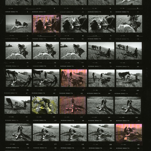 batman cricifiction performance.jpg