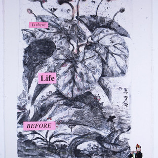 Is there Life... 65'x40' monotype, silkscreen, hand coloring,mixed medium on French handmade Paper Colombe Laroque 1997.jpg