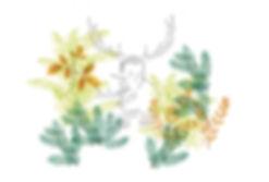creation sonore brame du cerf - matthieu cornelis - illustration julie servais
