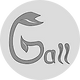 Gall - Ganzheitliche Physiotherapie