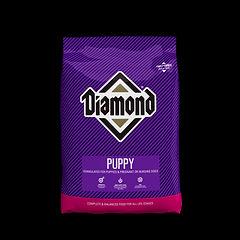 Diamond Puppy.jpg