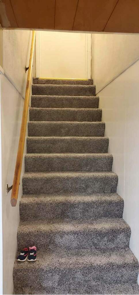 Stairs we Carpeted