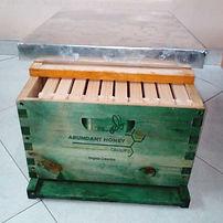 Colmena estandar ABUNDANTHONEY GROUP abejas apicultura y apiarios en Bogotá Colombia