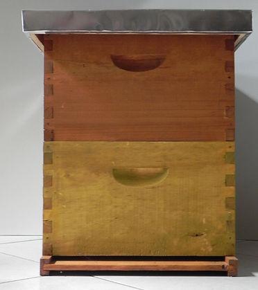 Colmena en pino de exelente calidad ABUNDANT HONEY GROUP apicultura en Colombia, implementos apicolas empleados por los apicultores