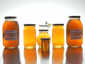 productos de las abejas y colmenas miel de abejas ABUNDANT HONEY GROUP