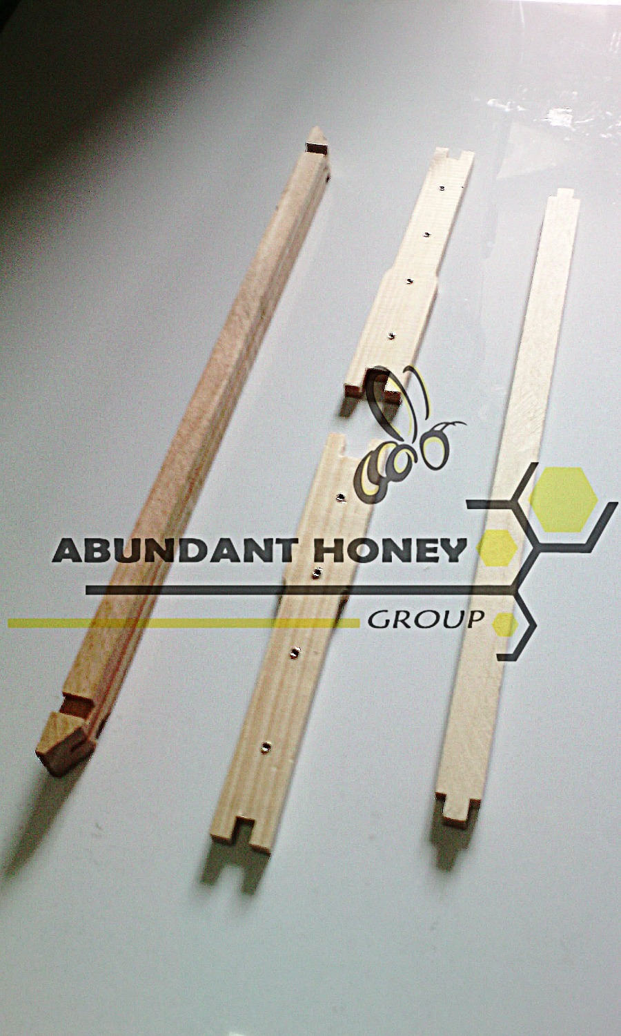 Apicultura  en Colombia ABUNDANT HONEY GROUP_edited.jpg
