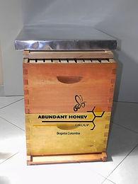Colmena producción ABUNDANTHONEYGROUP apicultura y apiarios en Bogotá Colombia