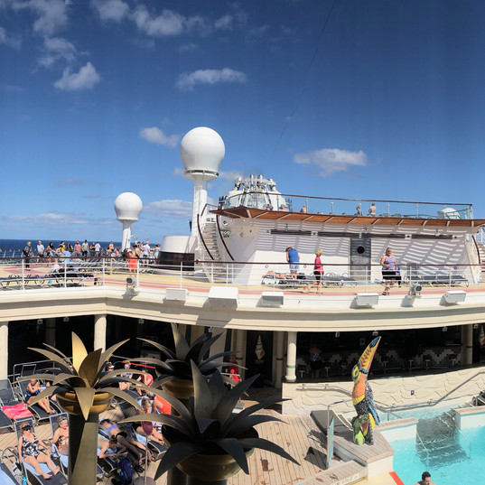 Royal Carib Pano.jpg