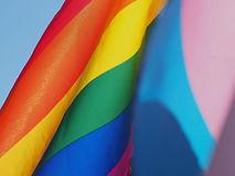 Pride Flag_edited_edited.jpg