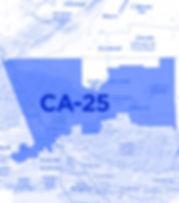 CA25_Dmap.jpg