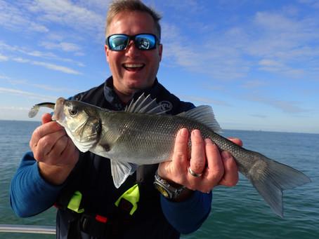 Brighton Inshore Fishing - Catch report 13th August 2017
