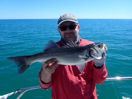 Brighton Inshore Fishing - Catch report 30th July 2020
