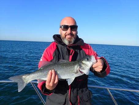 Brighton Inshore Fishing - Catch report 1st June 2020