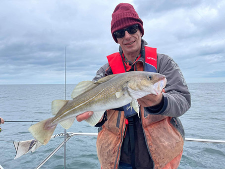 Brighton Inshore Fishing - Catch report 30th August 2021