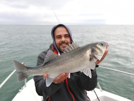 Brighton Inshore Fishing - Catch report 16th October 2020