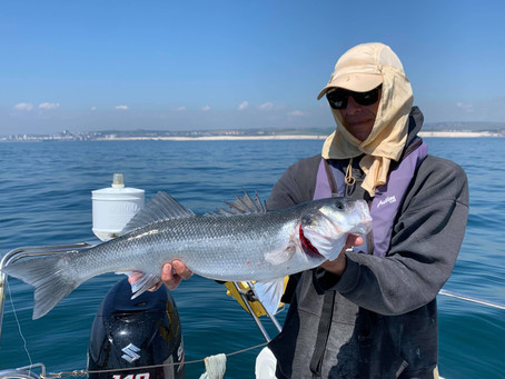 Brighton Inshore Fishing - Catch report 21st May 2020