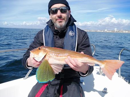 Brighton Inshore Fishing - Catch report 9th April 2021