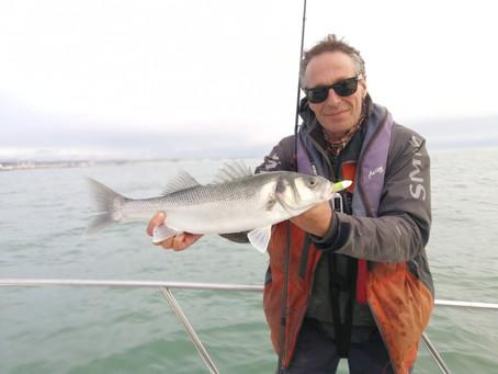 Brighton Inshore Fishing - Catch report 22nd November 2020