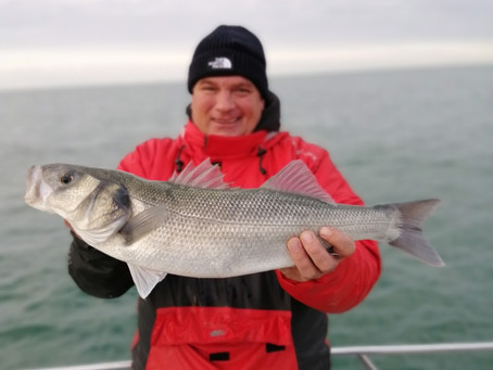 Brighton Inshore Fishing - Catch report 17th October 2020