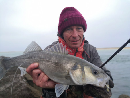 Brighton Inshore Fishing - Catch report 4th - 12th January 2021