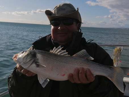 Brighton Inshore Fishing - Catch report 15th October 2020
