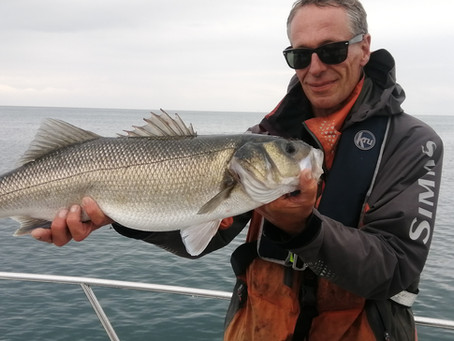 Brighton Inshore Fishing - Catch report 29th June 2021