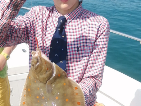 Brighton Inshore Fishing - Catch report 20th July 2021