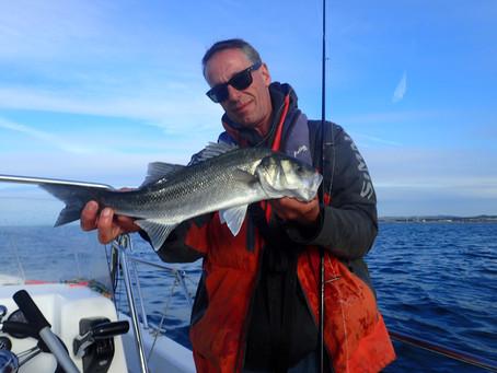 Brighton Inshore Fishing - Catch report 15th July 2020