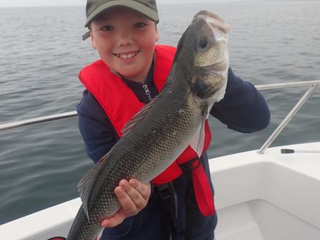 Brighton Inshore Fishing - Catch report 15th August 2020