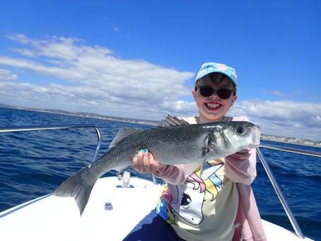 Brighton Inshore Fishing - Catch report 17th July 2020