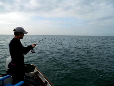 Brighton Inshore Fly Fishing...