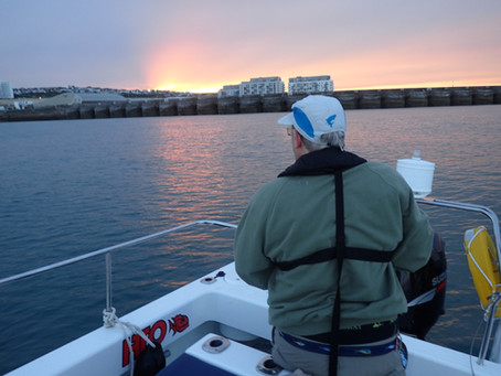 Brighton Inshore Fishing - Catch report 11th August 2017