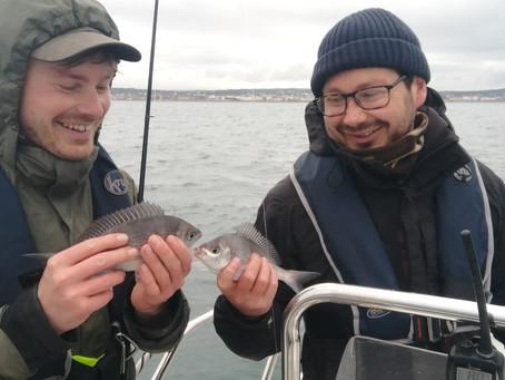 Brighton Inshore Fishing - Catch report 19th May 2021
