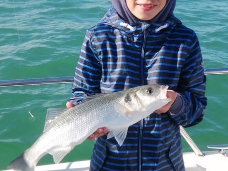 Brighton Inshore Fishing - Catch report 15th July 2021