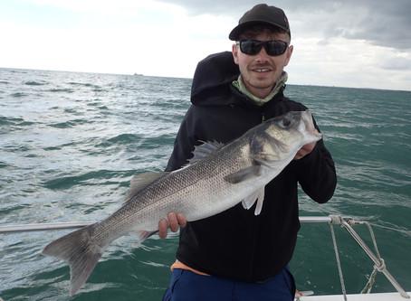 Brighton Inshore Fishing - Catch report 6th September 2020